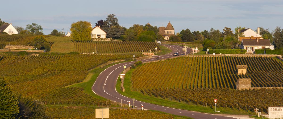Route des vignes