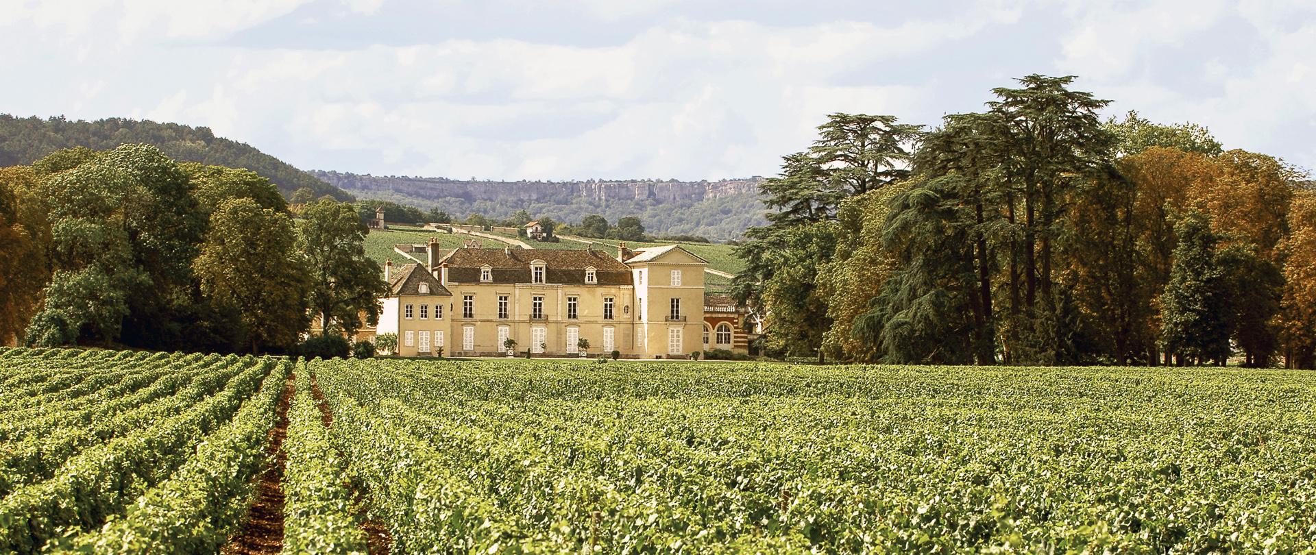 Vignoble du Château de Meursault