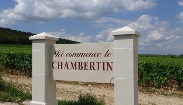 Les Promenades en Pinot du festival Musique au Chambertin